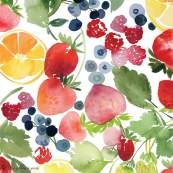 Tissu enduit ou laminé motif fruits - Multicolore - BIO - Cloud 9 ® Cloud9 Fabrics - 2
